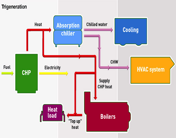 CHP Schematic - Tri-Generation